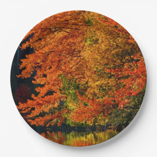 Autumn Fall Foliage Photo Colors Rustic Wedding 9 Inch Paper Plate