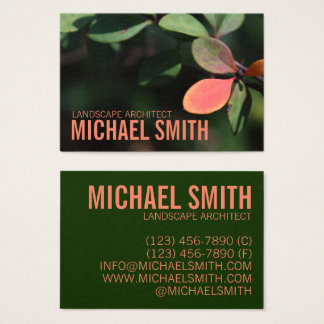 Autumn Fall Leaves Red Green Nature Foliage Photo Business Card