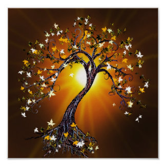 Autumn Fall Tree at Sunset Poster