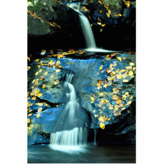 Autumn Falls, Smoky Mountain National Park, TN fro Cut Out