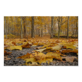 Autumn Floor Poster