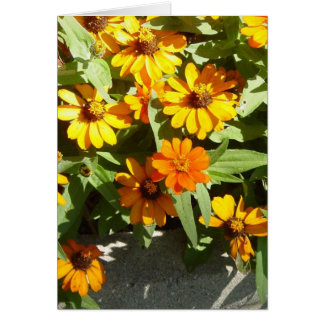 Autumn Flowers Note Card