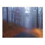 Autumn Fog Post Card