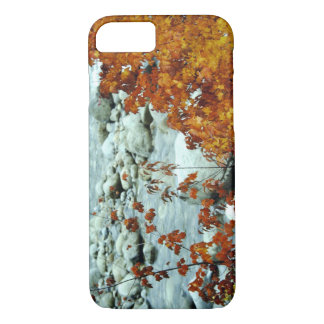 Autumn foliage by a mountain stream. iPhone 8/7 case