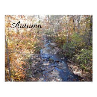 Autumn Forest Creek Postcard