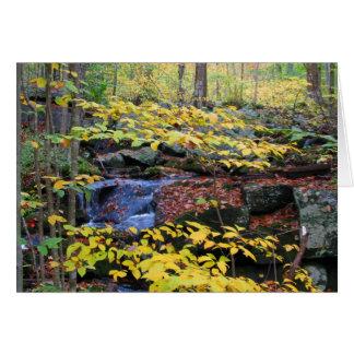 Autumn forest scene card