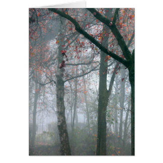 Autumn Forest with Red Leaves.beautiful landscape Card