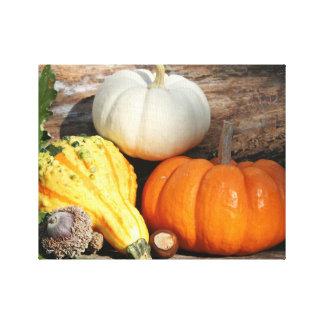 Autumn Gourds Fall Decorative Art Canvas