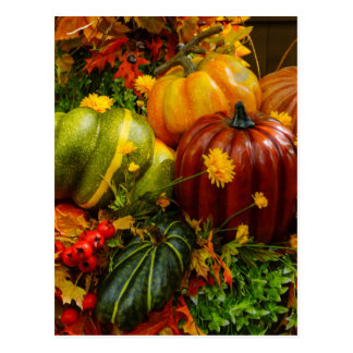 Autumn Grouping Postcard