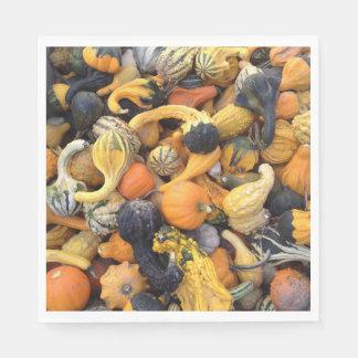 Autumn Harvest Gourds and Pumpkins Paper Napkin