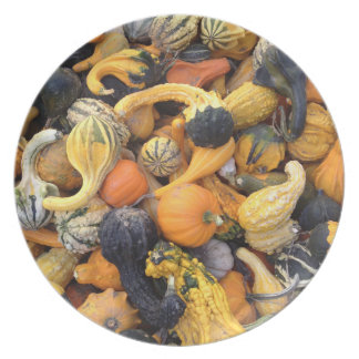 Autumn Harvest Gourds and Pumpkins Plate