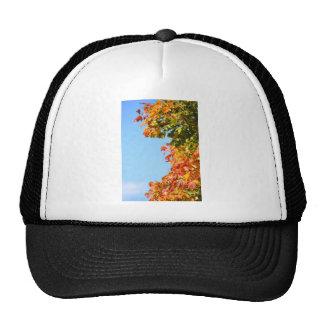 Autumn Mesh Hats