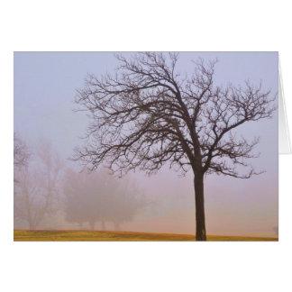 Autumn Haze 1 Greeting Card
