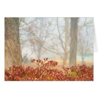 Autumn Haze 3 Greeting Card