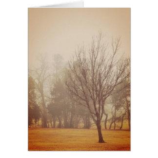 Autumn Haze 5 Greeting Card