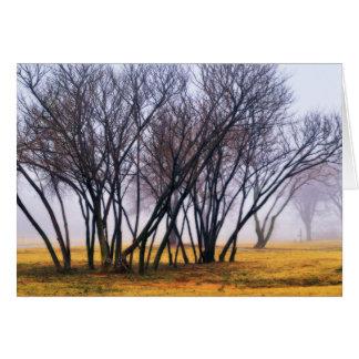 Autumn Haze 6 Greeting Card