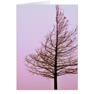 Autumn Haze 7 Greeting Card