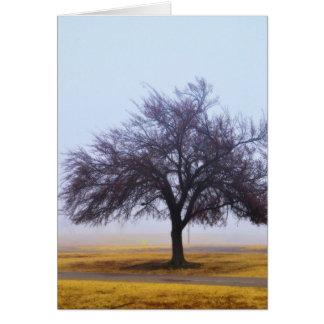 Autumn Haze 8 Greeting Card