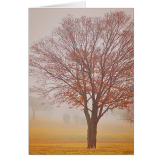 Autumn Haze 9 Greeting Card