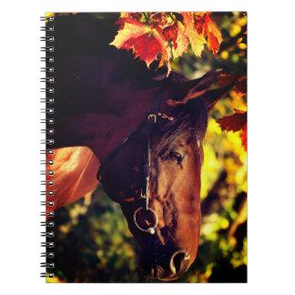 autumn horse spiral notebook