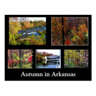 Autumn in Arkansas Photograph Postcard