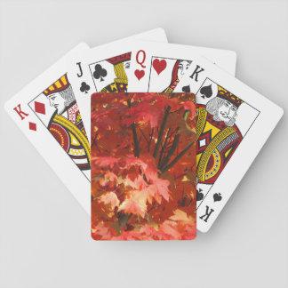Autumn in Canberra Card Deck