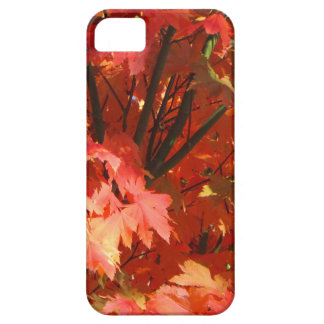 Autumn in Canberra Case For The iPhone 5