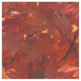 Autumn in Canberra Fabric
