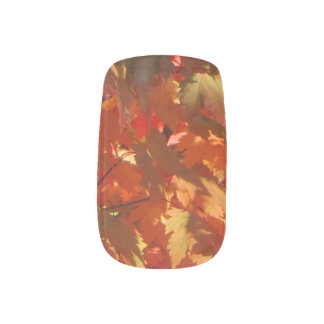 Autumn in Canberra Nails Sticker