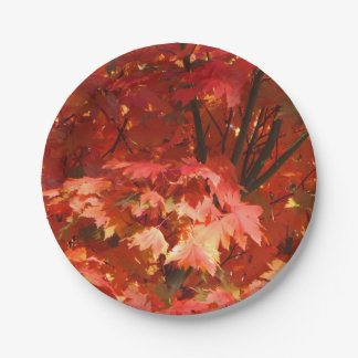 Autumn in Canberra 7 Inch Paper Plate