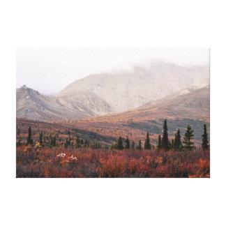 Autumn in Denali Canvas Print