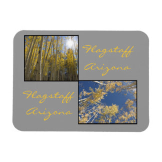 Autumn in Flagstaff Rectangular Photo Magnet