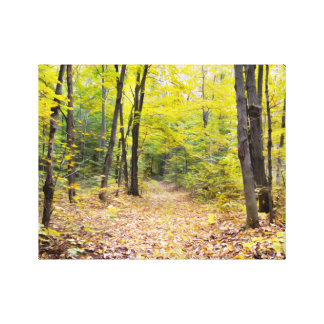 Autumn In Forest Canvas Print
