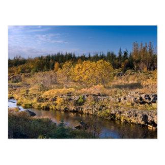Autumn in Iceland Postcard