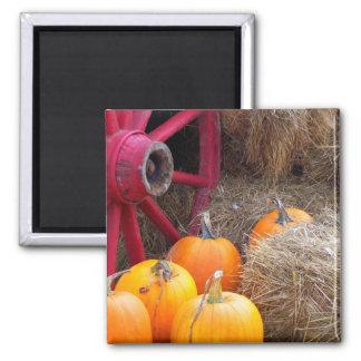 Autumn_In_Maine_9 Magnet