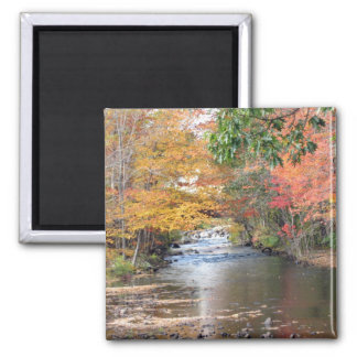 Autumn in New England Magnet