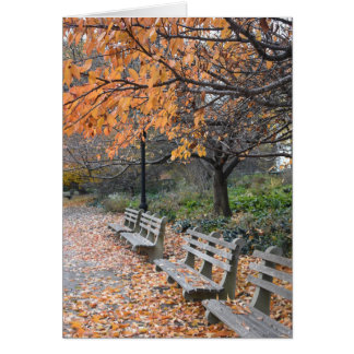 Autumn in New York Fall Leaves Riverside Park NYC Card