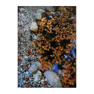Autumn in Pond Acrylic Wall Art