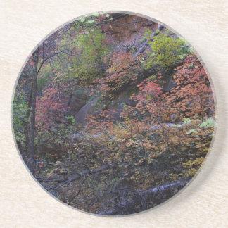 Autumn in Sedona Coaster