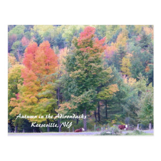 Autumn in the Adirondacks Postcard