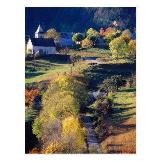 Autumn in the Alps Postcard