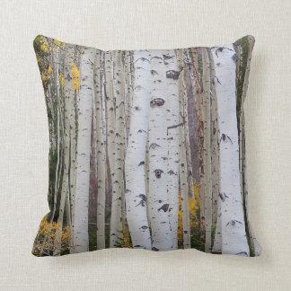 Autumn in the Aspen's Throw Pillow