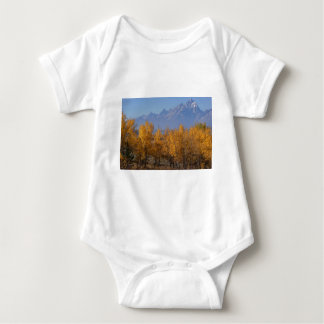Autumn in the Grand Tetons T Shirts
