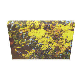 Autumn in Yellow Hues Canvas Print