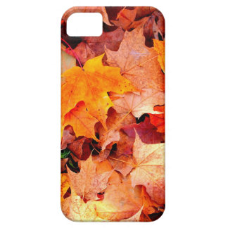 Autumn iPhone 5 Covers