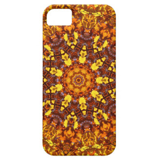 Autumn Kaleidoscope Case For The iPhone 5