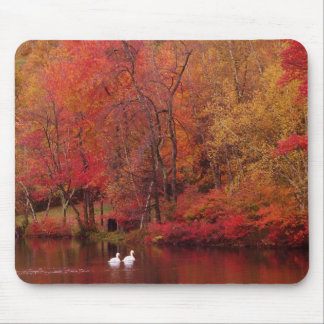 Autumn Lake Mouse Pad