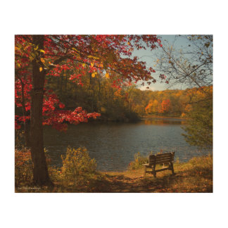 Autumn Lake with Bench Wood Wall Art