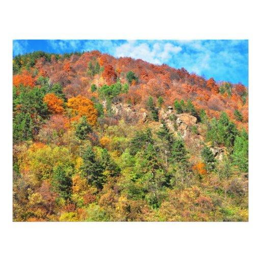Autumn landscape flyers