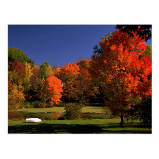 Autumn landscape, New England Postcard